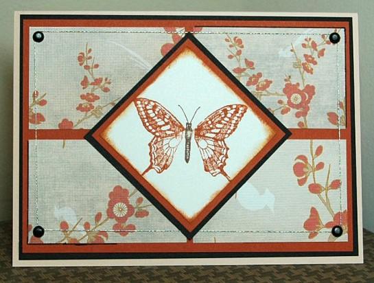 sc138-asian-butterfly.jpg