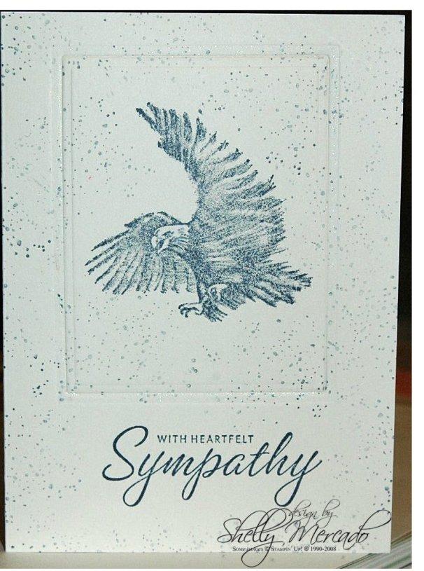 eagle-sympathy.jpg