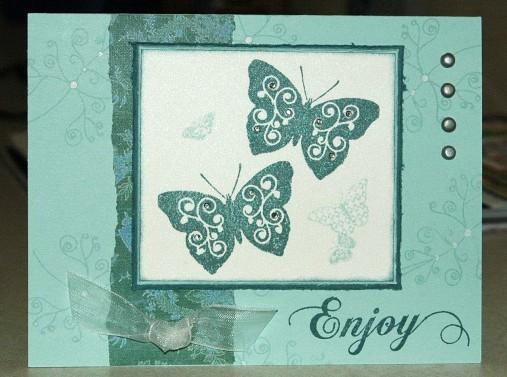 butterflies-tll.jpg