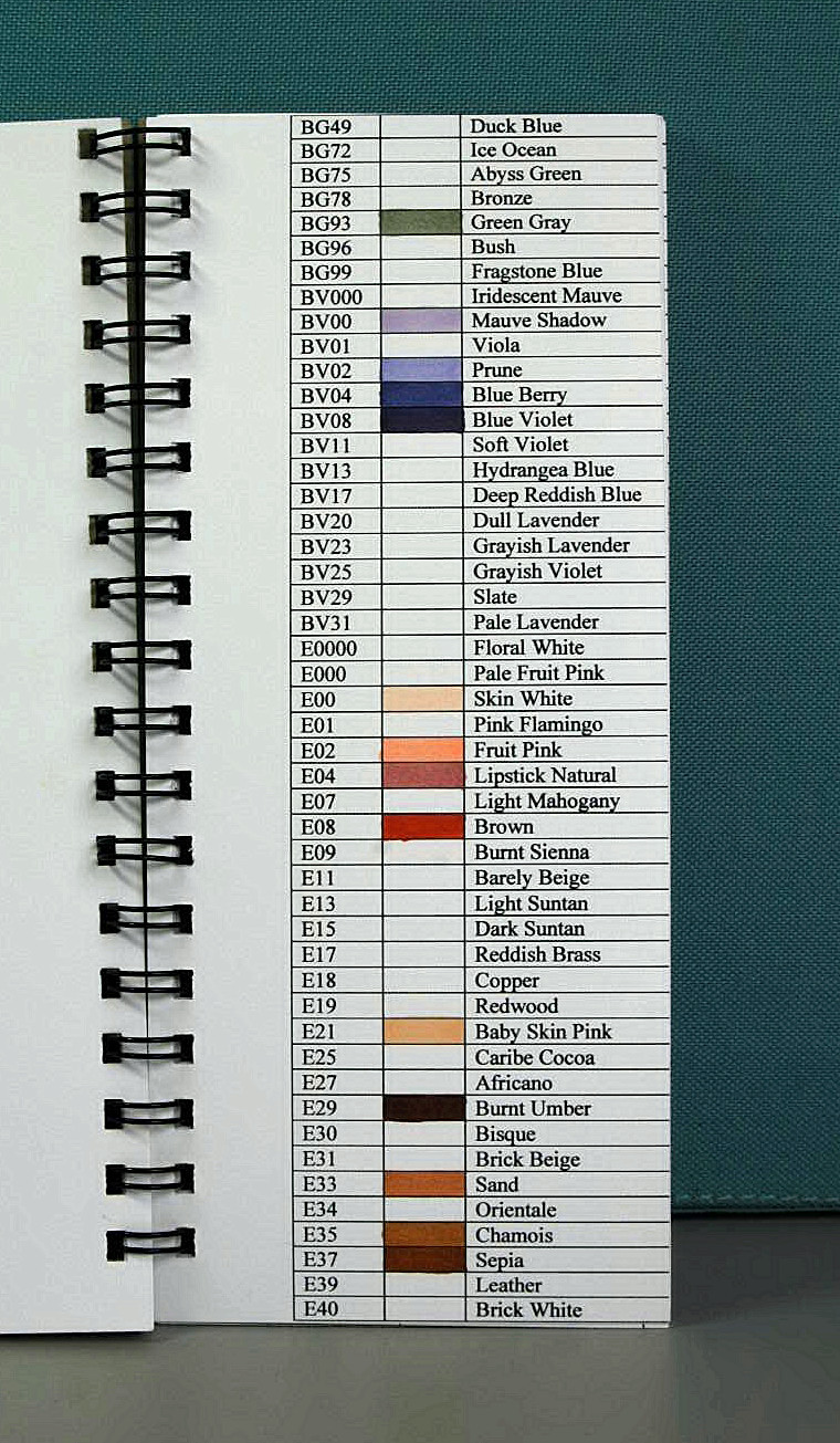 Copic color chart book using the bind it all popsicle toes i nvjuhfo Image collections
